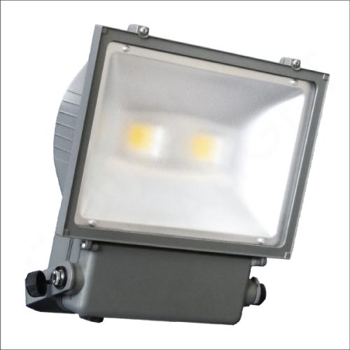 LED flood light (ZY-2004S)