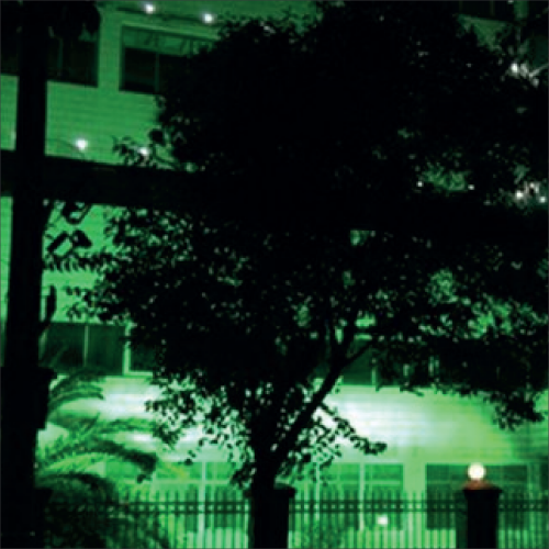 LED Flood light (WL-FL)