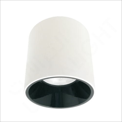 Cylindrical surface mounted light (BR2285-RD)