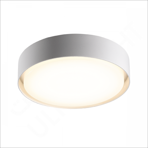 19W Surface Mounted light (H1331)