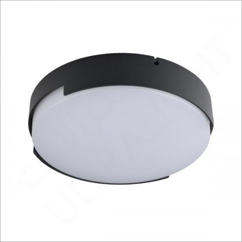 16W Wall light (ZY-WL1801B)